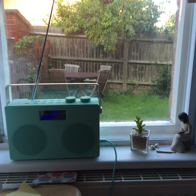 The view from my sewing room. I also use my radio to listen to lots and lots of desert island discs.